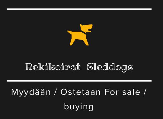 Lisää myytäviä koiria